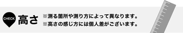 t-takasa_副本_副本.jpg